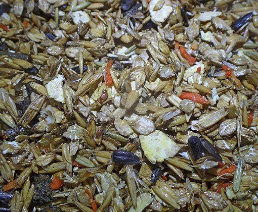 Мюсли для жеребят с 6 до 12 мес. 15 и 30 кг. Богатырские корма